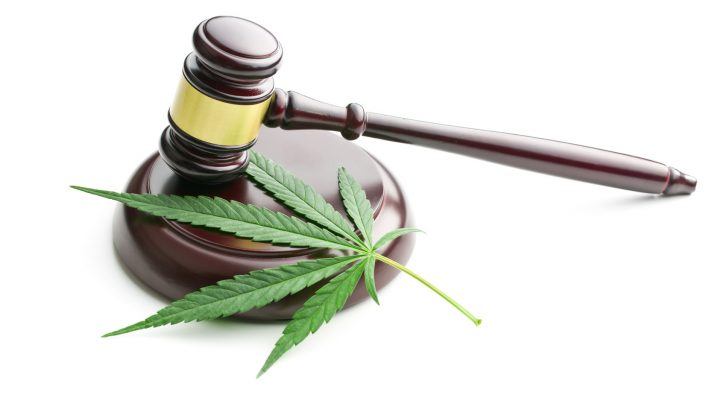 NJ Marijuana Law – Significant Information You Need To Know